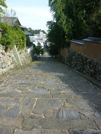 Kitsuki pathway