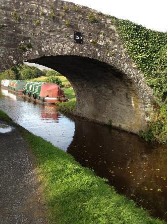 Ty Newydd B&B: Canal walk at bottom of property