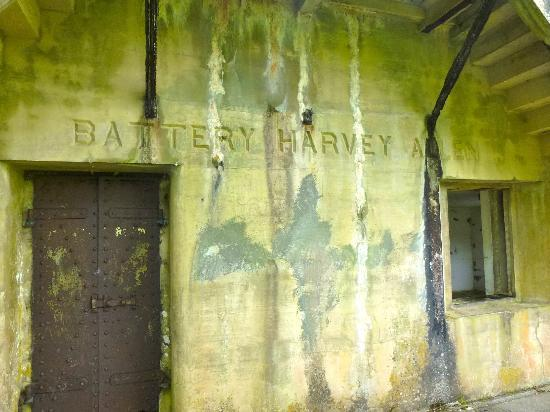 Fort Canby State Park : Battery Harvey