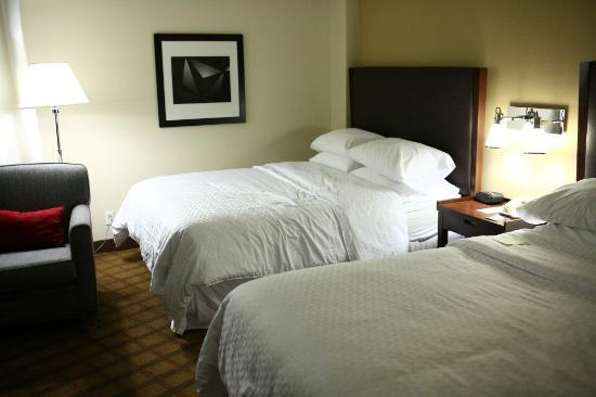 Four Points by Sheraton Orlando Studio City Hotel: Room