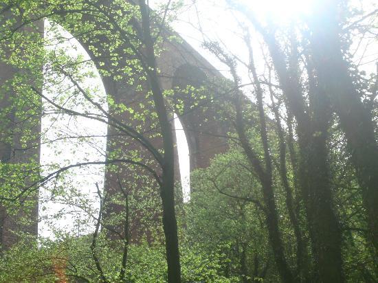 East Durham Coast : Castle Eden Denemouth Viaduct