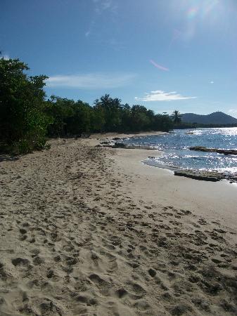 Residence Hoteliere Les Cayalines: Plage de l'Anse désert