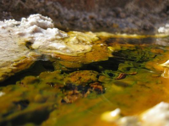 Travertine Hot Spring: Travertine hot springs