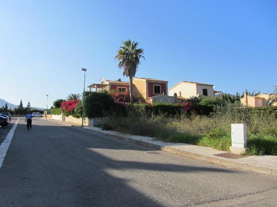 Protur Bahia Azul Apartmentos: surrounding area