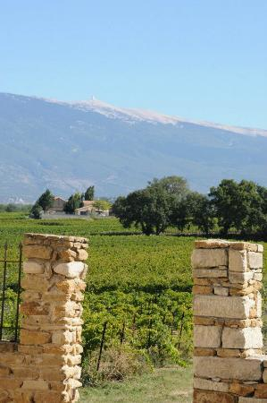 Auberge du Vin : view from terrain