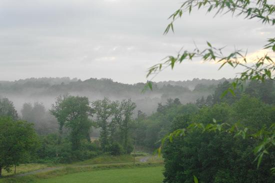 Domaine de la Bélie : One view on our forest and fields