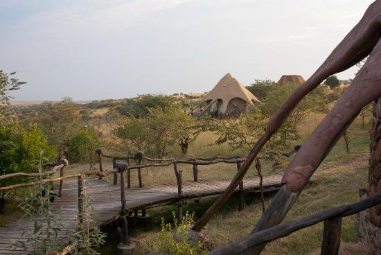 Amani Mara Camp: Das Außengeläne