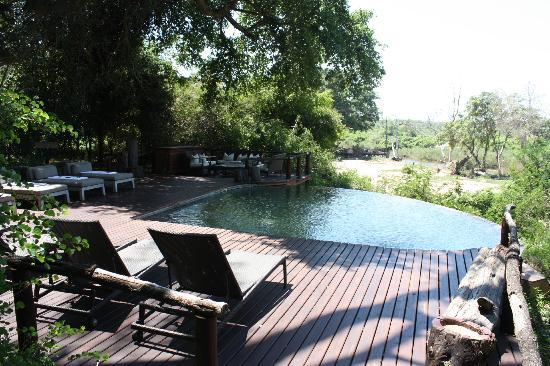 Lion Sands River Lodge: One of two pools that overlooks the river bed