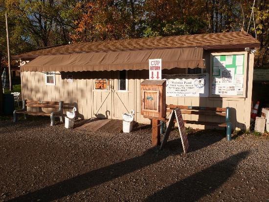 Webster Pond: building to get bird feed