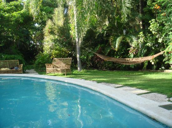 Siboney Beach Club: The hotel gardens