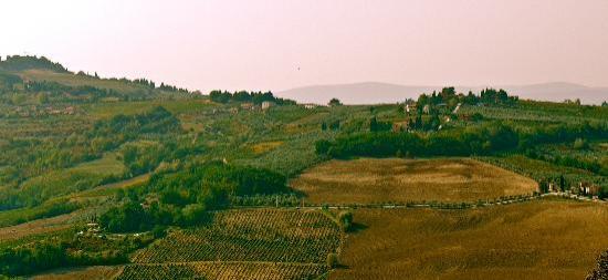 Villa Baldasseroni: Beutiful tuscany view