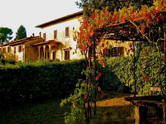 Villa Baldasseroni: Beatuful property