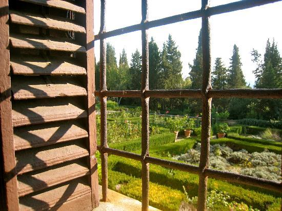 Villa Baldasseroni: view of the garden from living room window