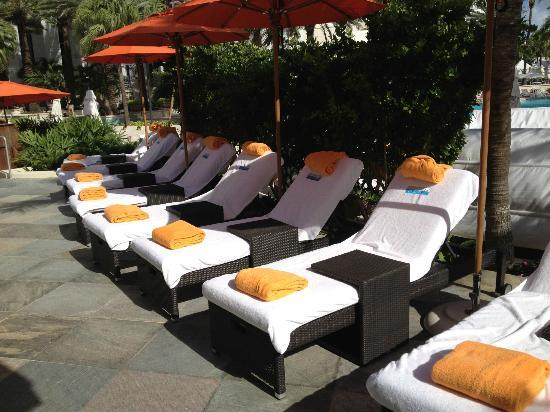 Loews Miami Beach Hotel: loungers outside the cabanas
