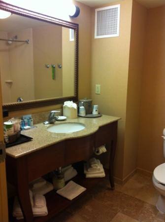 Hampton Inn Springfield South Enfield : clean- up to date bath