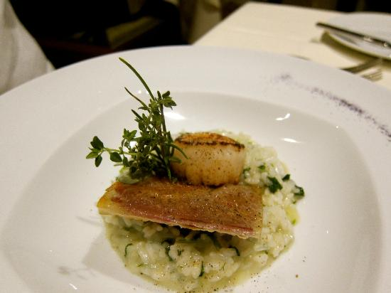 Cascade Wellness & Lifestyle Resort: Scallop and fish