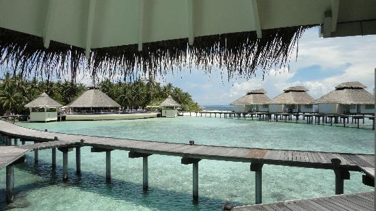 Ellaidhoo Maldives by Cinnamon: View from room towards pool/restaurant