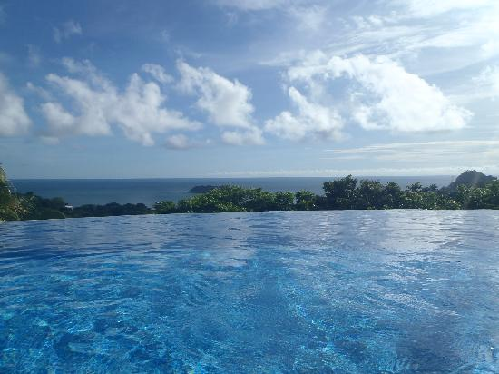 Hotel Villa Roca: Infinity Pool
