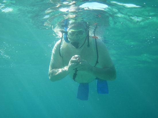 Quicksilver Snorkel Tours: Snorkel Snorkel!