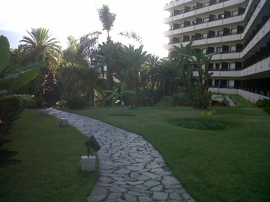 Hotel Puerto de la Cruz: going up to the 2nd pool from the 1st
