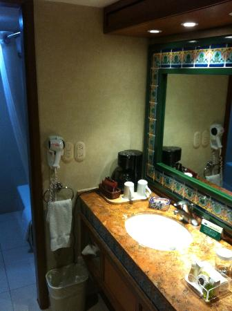 Hotel Lucerna Tijuana: Bagno