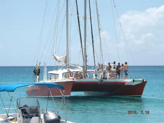 El Tigre Catamaran Tours Barbados