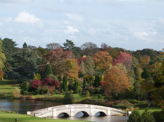 Stoke Park Country Club, Spa and Hotel: colorful trees