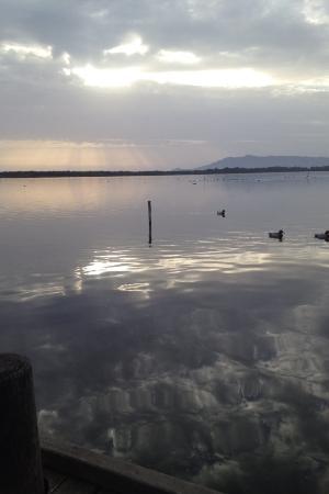 Oasi WWF del Lago di Burano