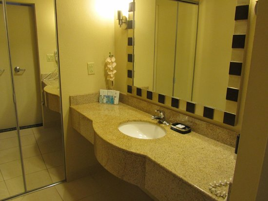 Hampton Inn Washington, DC - Convention Center: King Suite washbasin area