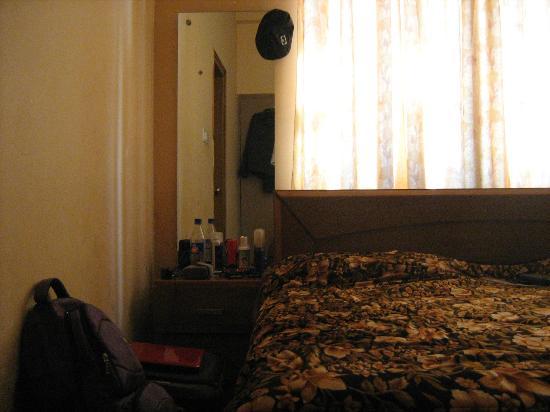 Hotel Gomti Residency: room