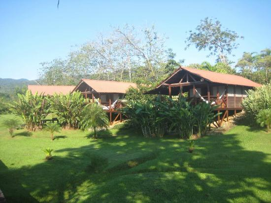 La Anita Rainforest Ranch : 9 cabins in a row perfect for groups.