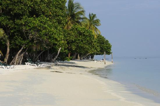 Vilamendhoo Island Resort & Spa: Beach view