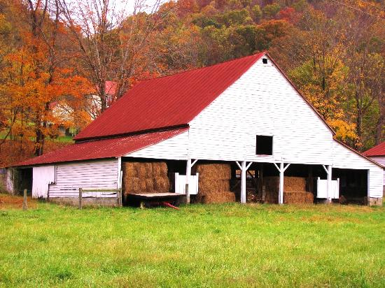 Fort Lewis Lodge: Barn