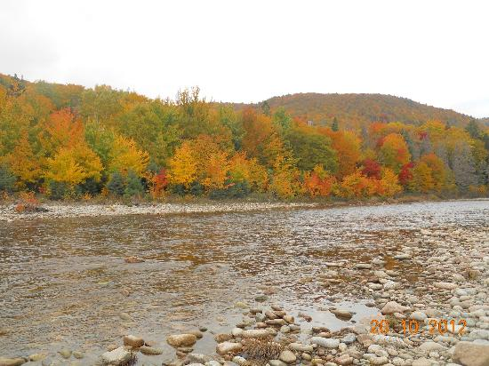 Cabot Shores Wilderness Resort: Wonderful Autumn Scenery