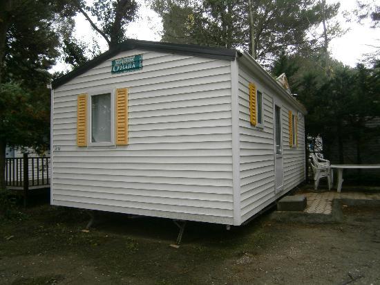 Camping Club Taxo les Pins: Vistas desde el exterior bungalow R013