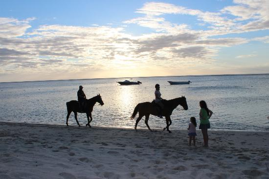 LUX Le Morne: horseback riding on the beach