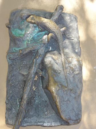 Arizona-Sonora-öken-museet: Fossils