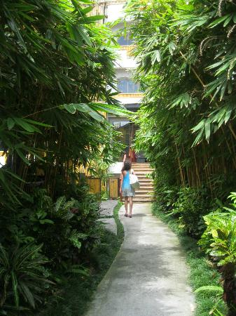 Bamboo House Phuket: the drive up to the hotel reception