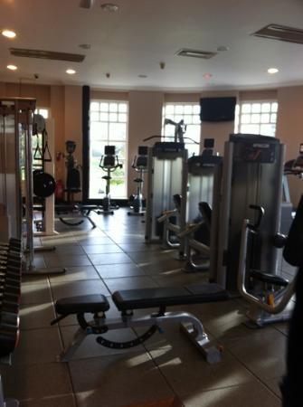 Hilton Puckrup Hall, Tewkesbury: gym