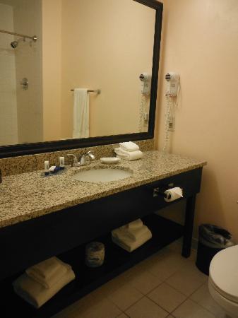 BEST WESTERN PLUS Brunswick Bath: Very clean bathroom