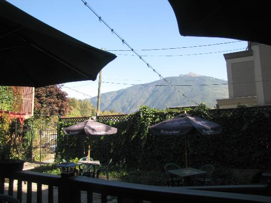 Ginger & Spice Bistro : view from the back patio.