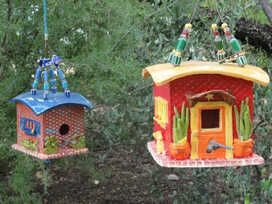 Tucson Botanical Gardens: 2