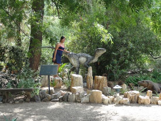 Tucson Botanical Gardens: 8
