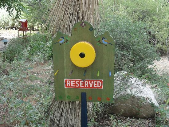 Tucson Botanical Gardens: 1