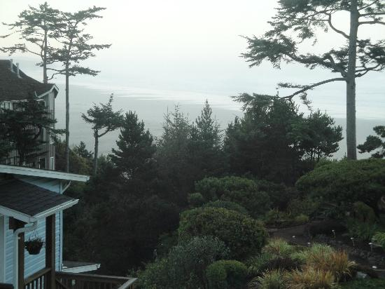 Ocean House Bed and Breakfast: View from Windswept