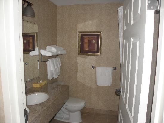 BEST WESTERN PLUS The Inn at King of Prussia: Bathroom