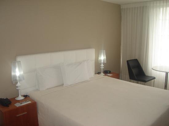 Real Colonia Hotel & Suites: La habitación
