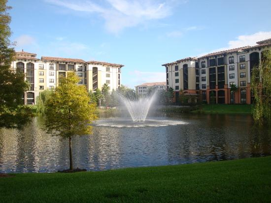 Sheraton Vistana Villages - International Drive: Pond in the middle of the buildings