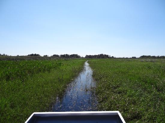 Alligator Cove Airboat Nature Tours: {7} Just another beautiful view.