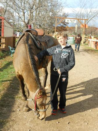 Red Ridge Ranch Riding Stable: My son & the horse he rode